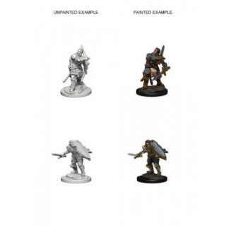 Dungeon & Dragons Nolzurs Marvelous Miniatures - Human Male Paladin