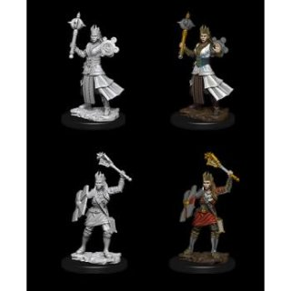 Dungeon & Dragons Figur Human Clericer