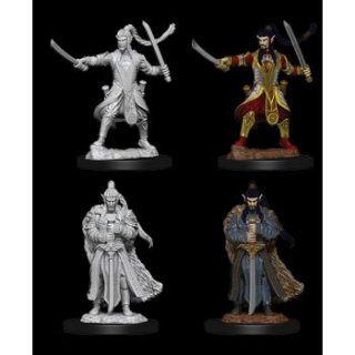 Dungeon & Dragons Nolzurs Marvelous Miniatures - Male Elf Paladin