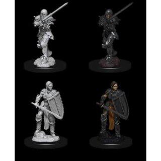 Dungeon & Dragons Nolzurs Marvelous Miniatures - Female Human Fighter