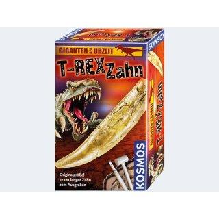 KOSMOS Giganten der Urzeit T-Rex Zahn - 12cm lang Experimentierkasten