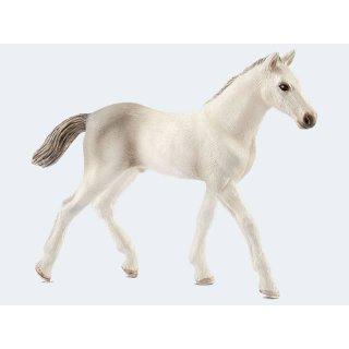 Schleich® Horse Club Horse Holsteiner Fohlen